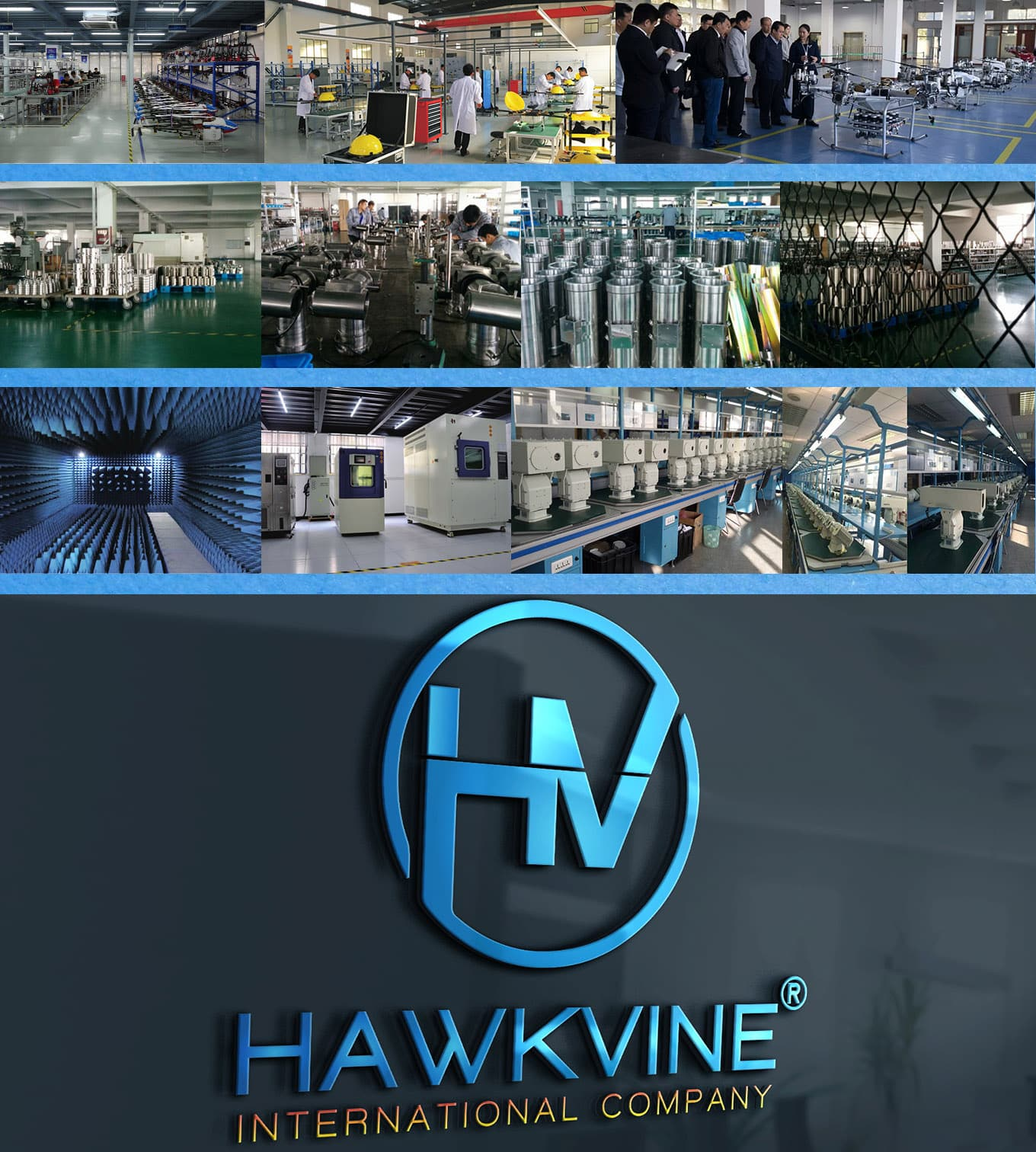 Hawkvine International Company 2018