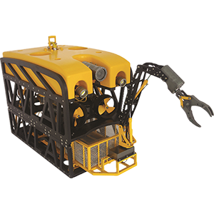 Hawkvine HV-ROV004
